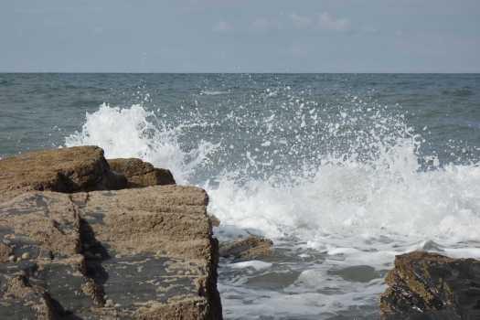 The sea, the sea.jpg